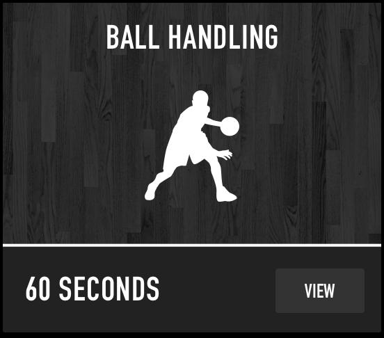 Dr. Dish Basketball Training Management System- Ball Handling