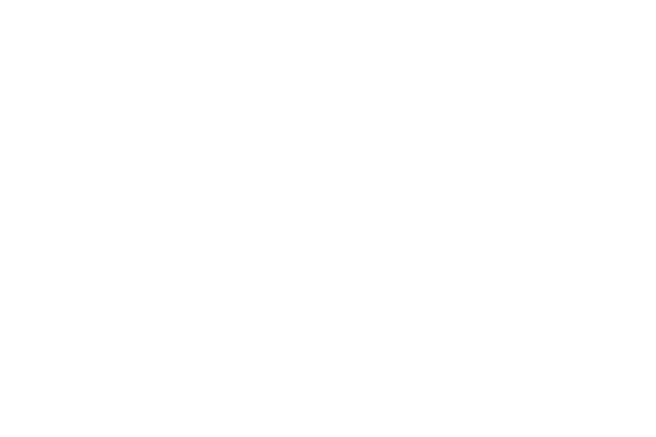 Five Star Basketball & Dr. Dish Basketball