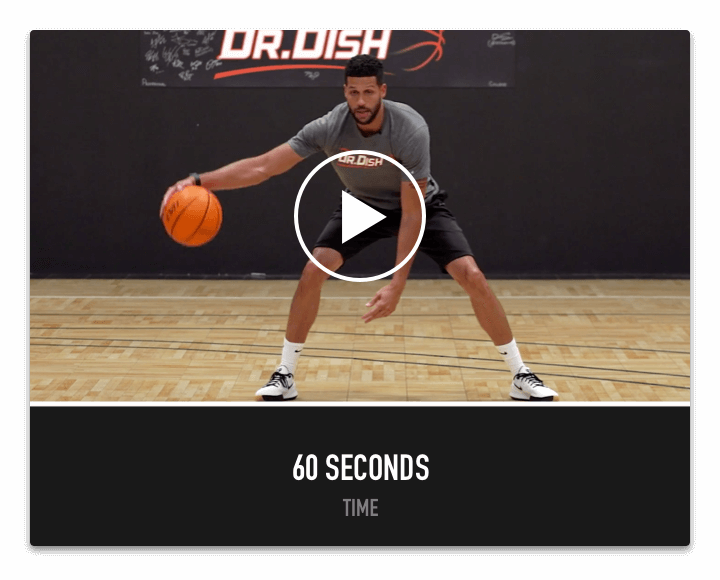 Dr. Dish Home Basketball Shooting Machine- Ball Handling