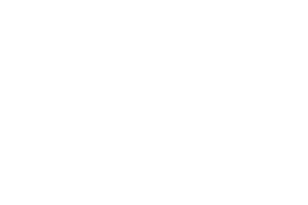 Sports Illustrated & Dr. Dish Basketball