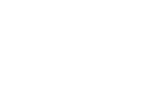 Men's Journal & Dr. Dish Basketball